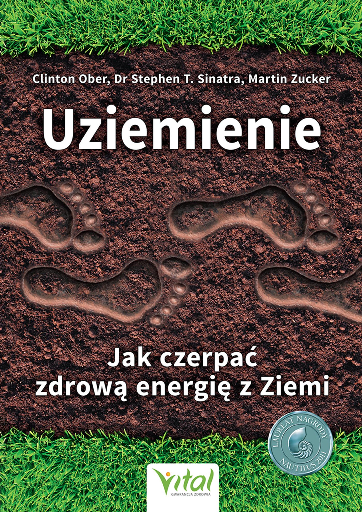 energia z ziemi